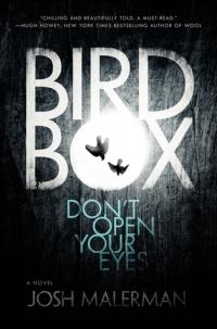 Bird Box book cover (a spooky dark background with the O in Box lit up like a full moon, with the silhouette of two plummeting birds)